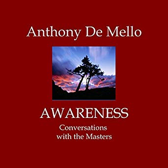 Awareness - The Audio Book